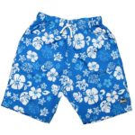 Board Shorts Coastline Blue